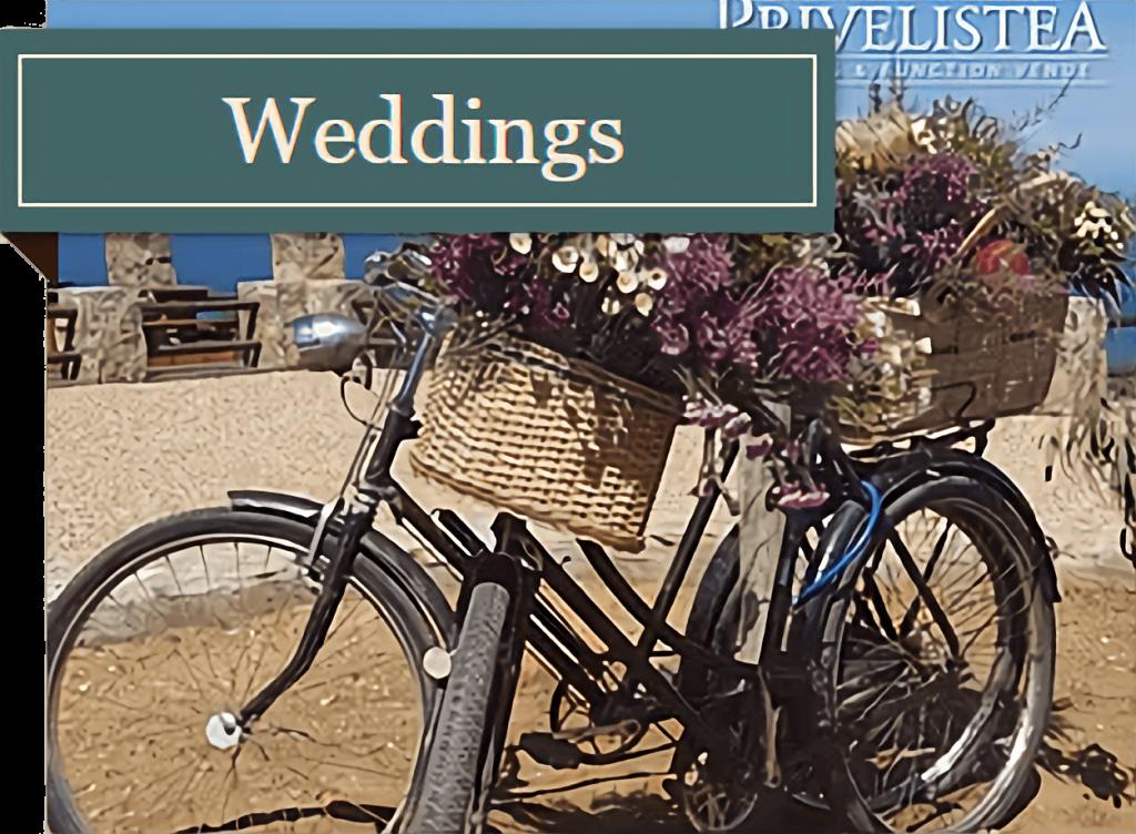 Weddings in Still Bay and Jongensfontein at Privelistea